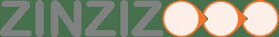 ZINZIZ